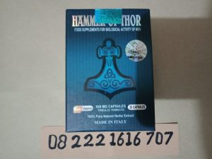 Hammer Asli Di Bali