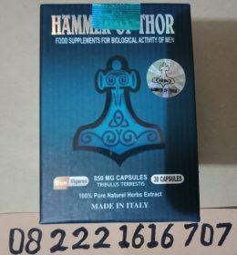 Obat Hammer Asli